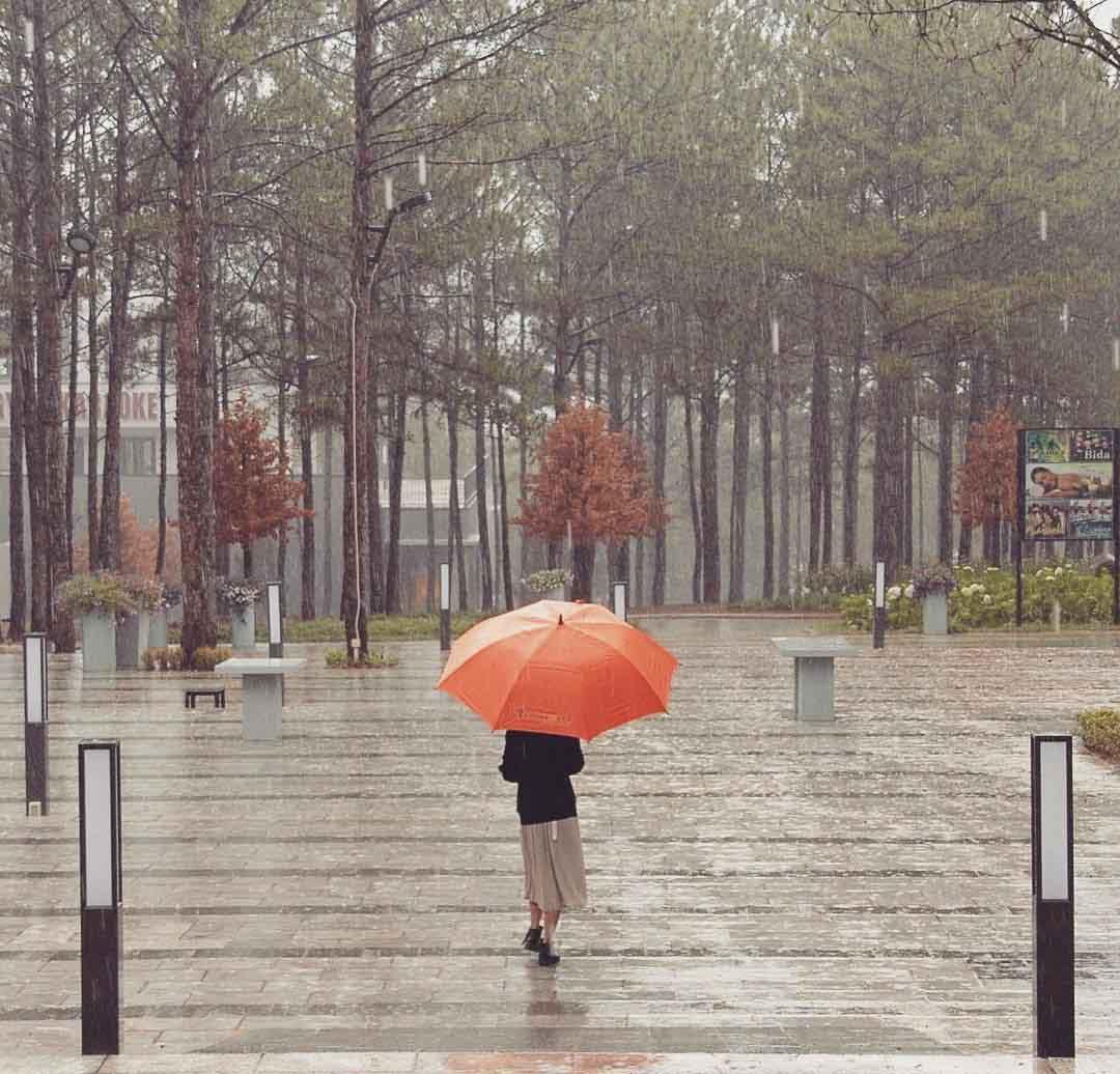 Nên mặc gì khi đi du lịch Đà Lạt 4 mùa xuân hạ thu đông?